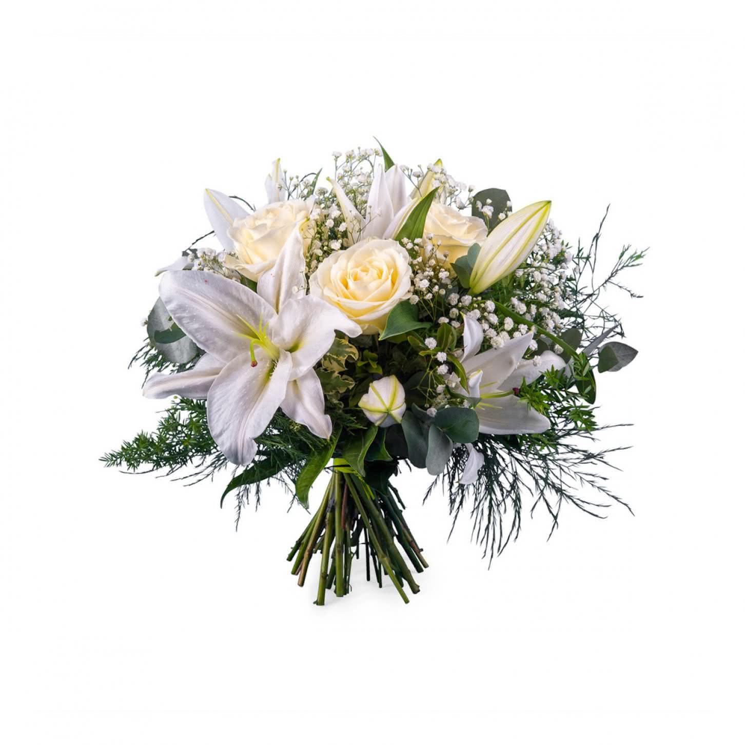 aneto ramo de flor branca - Ramos De Flores Bonitos