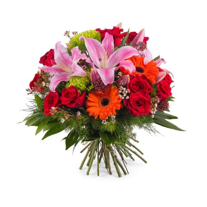 Tramontana, Ramo de Flores Mistas
