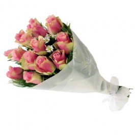 Bunch of Pink Roses, Bunch of Pink Roses