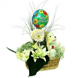 Arrangement for New Born Baby, Arrangement for New Born Baby