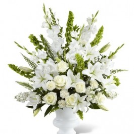 Morning Stars Arrangement, Morning Stars Arrangement