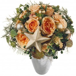 Etoile fleurie scintillante, Etoile fleurie scintillante