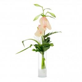 Even men deserve flowers, Even men deserve flowers