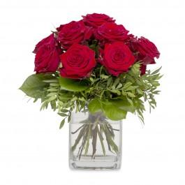 Cavalier of Roses, Cavalier of Roses