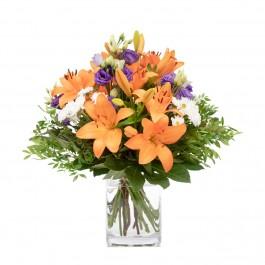 Flower Surprise, Flower Surprise