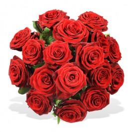Einfach rote Rosen, Einfach rote Rosen