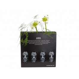 4 Bottles of ASK Beer with a Flower, 4 Bottles of ASK Beer with a Flower
