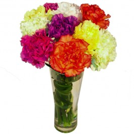 Colorful bouquet with 10pcs. of carnations, Colorful bouquet with 10pcs. of carnations