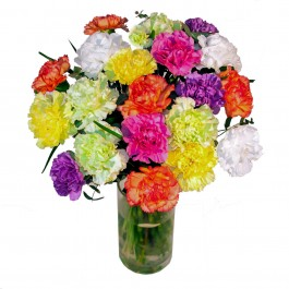 Colorful bouquet with 20pcs. of carnations, Colorful bouquet with 20pcs. of carnations