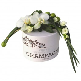 Decorated champagne truffles, Decorated champagne truffles