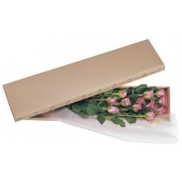 La vida en rosas rosas, La vida en rosas rosas