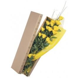 La vida en rosas amarillo, La vida en rosas amarillo