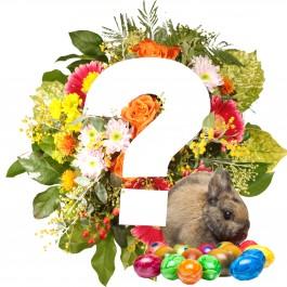 Ramo Sorpresa para Pascua / Selección de colores, Ramo Sorpresa para Pascua / Selección de colores