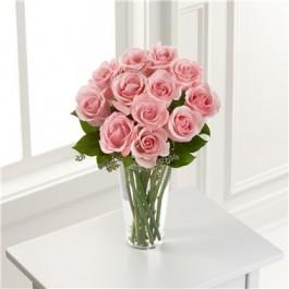 Pink Rose, Pink Rose