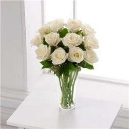 Rosas blancas, Rosas blancas
