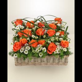 Giardino di rose, Giardino di rose