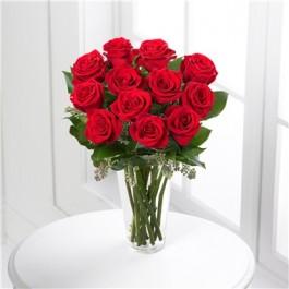 Roses Rojas, Roses Rojas