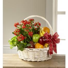 Garden's Paradise Basket, Garden's Paradise Basket