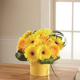The FTD Sunny Surprise Bouquet C5-5156, The FTD Sunny Surprise Bouquet C5-5156