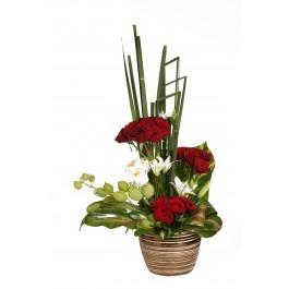 Flores de temporada, Flores de temporada