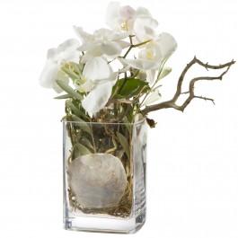 Des orchidées, autrement vase inclus, Des orchidées, autrement vase inclus