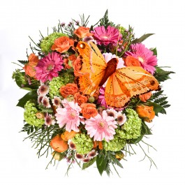 Beautiful colourful bouquet with butterfly, Beautiful colourful bouquet with butterfly