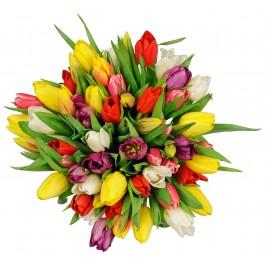 Bouquet-Surpresa com tulipanes / Cor à escolha, Bouquet-Surpresa com tulipanes / Cor à escolha