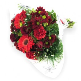 Red Mixed Bunch, Red Mixed Bunch