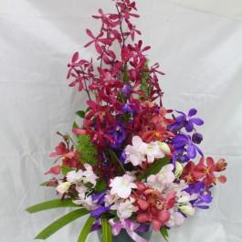 Arrangement with Orchids, Arrangement with Orchids
