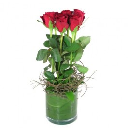 6 Red roses in a vase, 6 Red roses in a vase