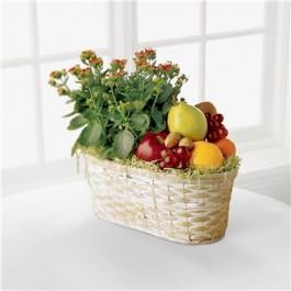 Frutas y Flores, Frutas y Flores