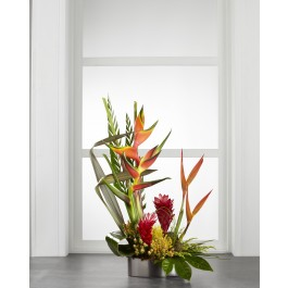 The FTD® Island Breeze™ Arrangement C24-5190, The FTD® Island Breeze™ Arrangement C24-5190