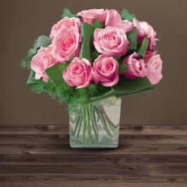 Olympie rose, Olympie rose