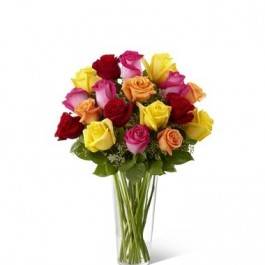 Bright Spark Rose, Bright Spark Rose