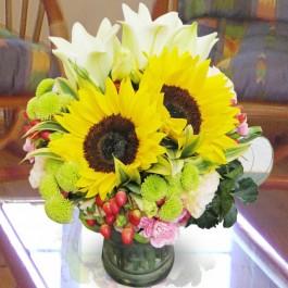 Arrangement in Vase Yellow, Arrangement in Vase Yellow