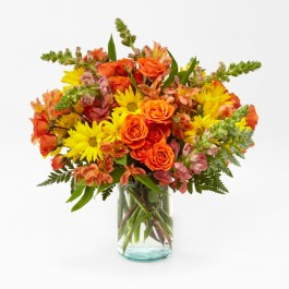Warm Amber Bouquet, Warm Amber Bouquet