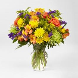 Marmalade Skies Bouquet, Marmalade Skies Bouquet