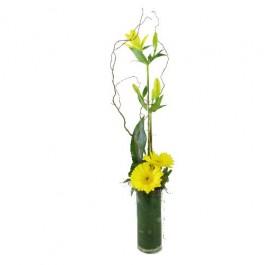 Lilies & Gerberas - Yellow, Lilies & Gerberas - Yellow