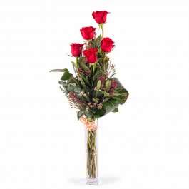 Penta, 5 Rosas Vermelhas de Pé Longo