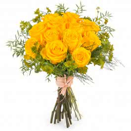 Amanhecer, Rosas Amarelas de Pé Curto