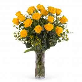 Impulso, 18 Rosas Amarelas de Pé Longo
