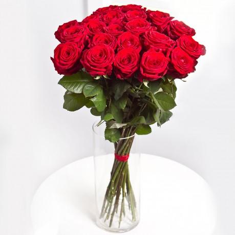 25 rosas de tallo large, 25 rosas de tallo large