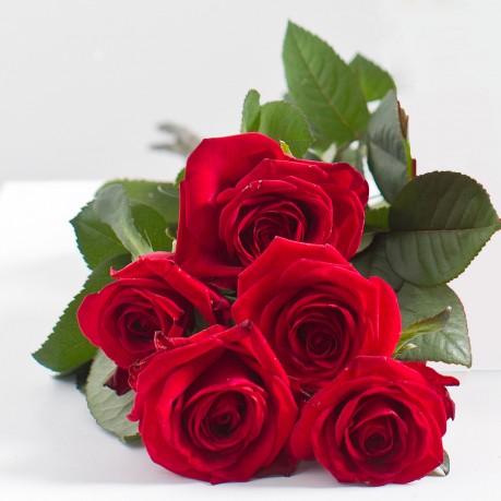 Ramo de 5 rosas rojas, Ramo de 5 rosas rojas