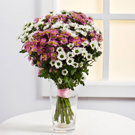 Colourful Bouquet of Chrysanthemums, Colourful Bouquet of Chrysanthemums