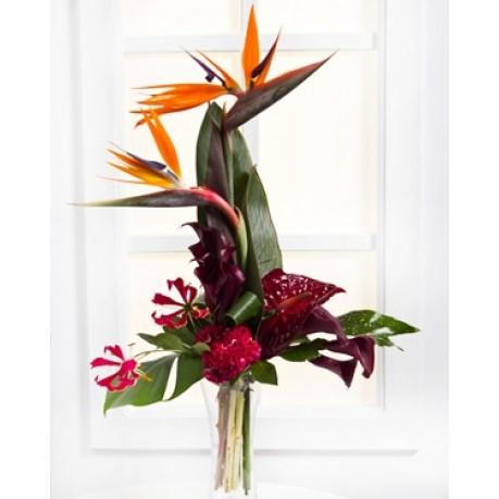 Exotic Bouquet, Exotic Bouquet