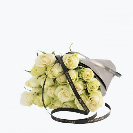 White Roses Gift Wrapped, White Roses Gift Wrapped