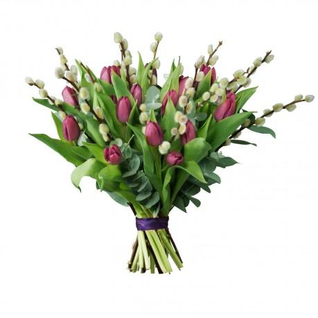 Tulip Willow, Tulip Willow