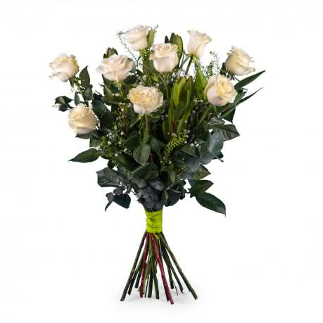 Nona, 9 Rosas Brancas de Pé Longo