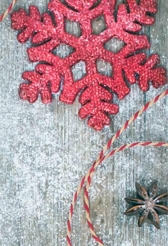 Presentes originais de Natal na forma de flores e plantas