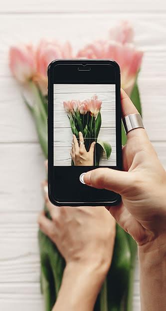 Contas de Instagram para amantes de flores